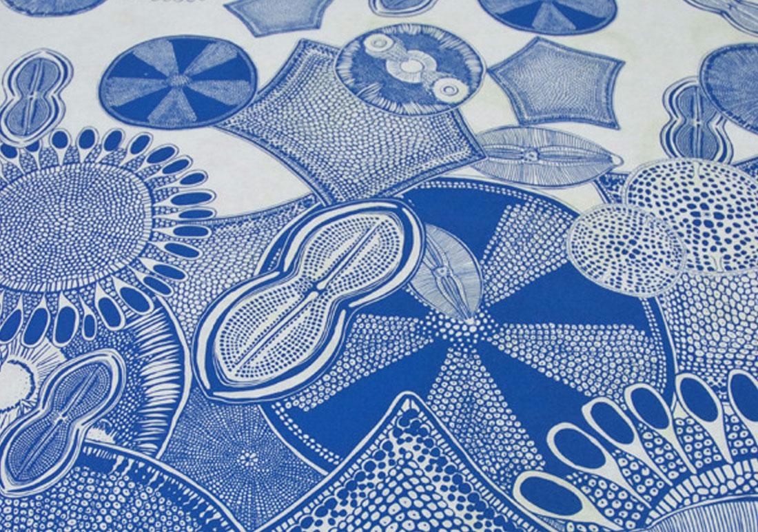 details-bleu2